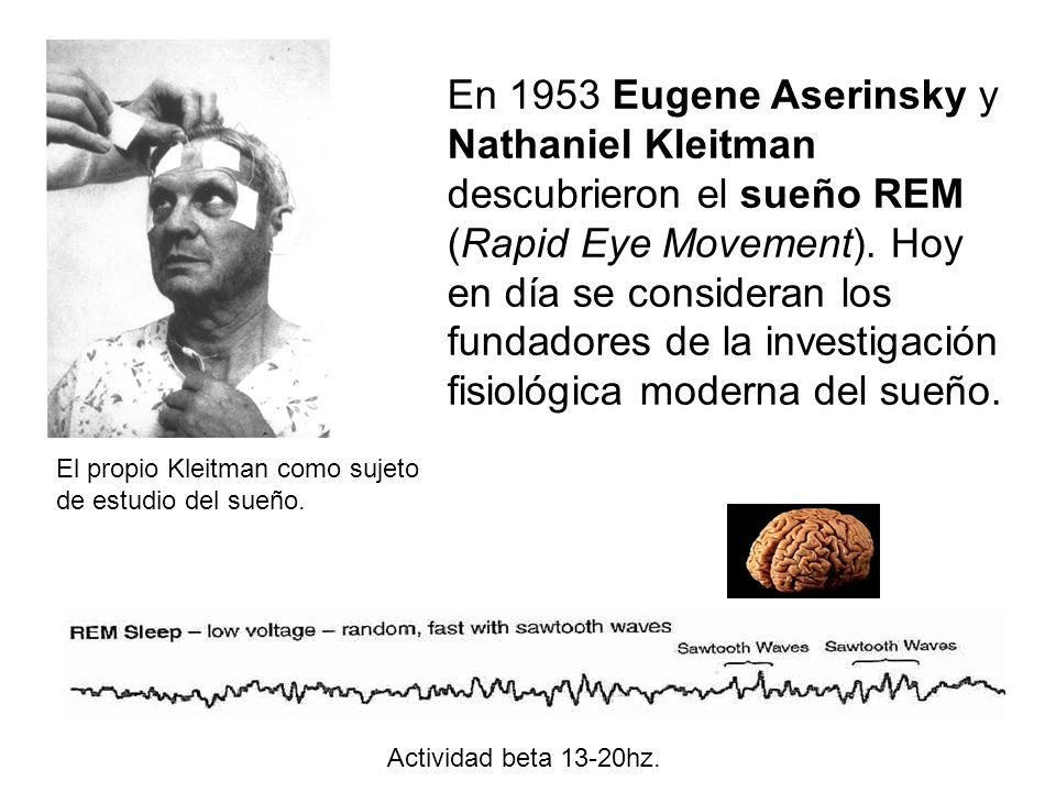 El propio Kleitman como sujeto de estudio del sueño. Actividad beta 13-20hz.