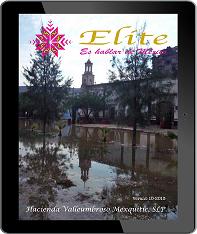 Revista Elite 8